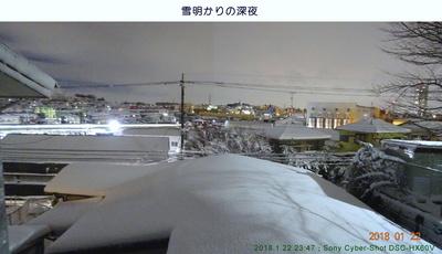 0122雪明かり.jpg