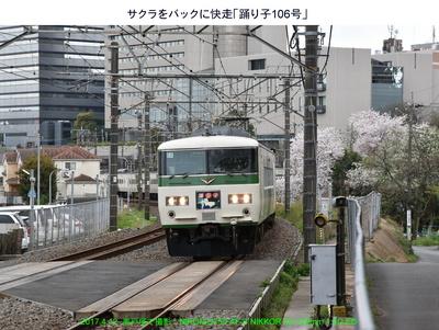 0412踊り子106号.jpg
