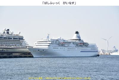 0430Pびぃなす.jpg