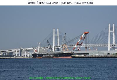 0430THORCO LIVA.jpg