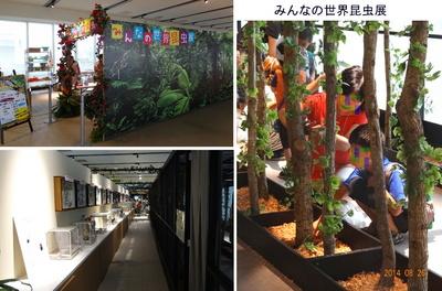 0826昆虫展.jpg