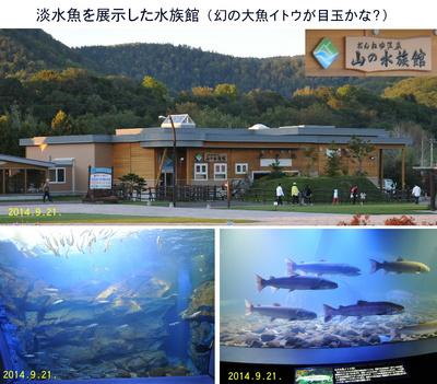0921山の水族館.jpg