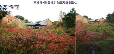 1110東福寺1.jpg