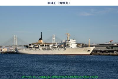 1205青雲丸.jpg