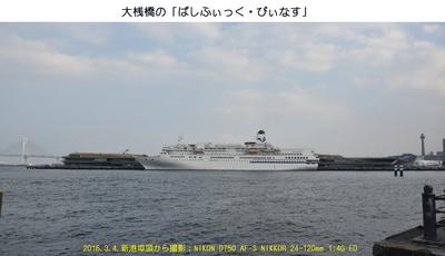 20160304P・びぃなす.jpg