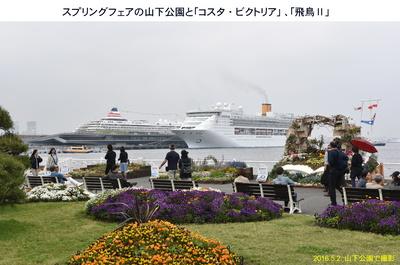 20160502花と豪華船.jpg