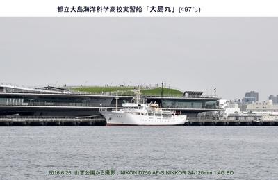20160626大島丸.jpg