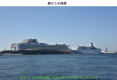 20160831DP&PV.jpg