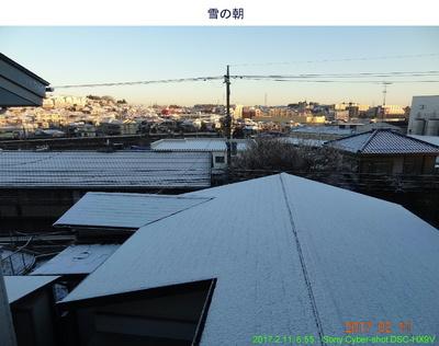 20170211雪の朝.jpg