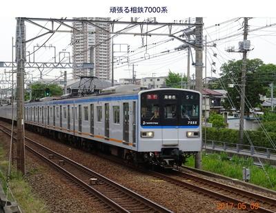 0509相鉄1.jpg