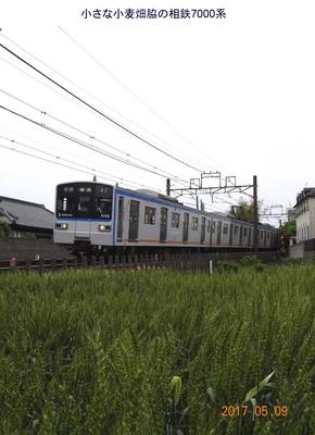 0509相鉄2.jpg