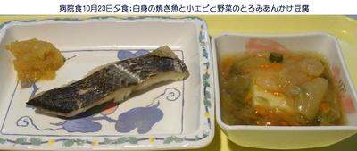1023病院夕食副菜.jpg