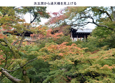 1110東福寺2.jpg
